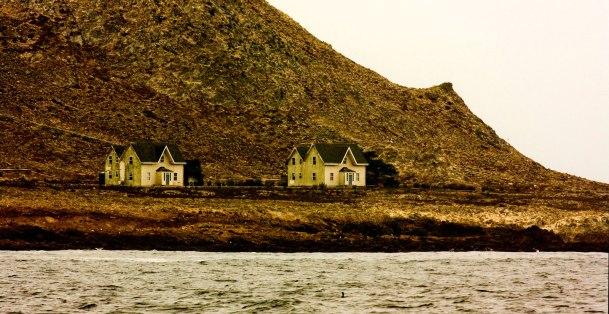 Farallon Islands, California.